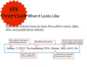APA Overview